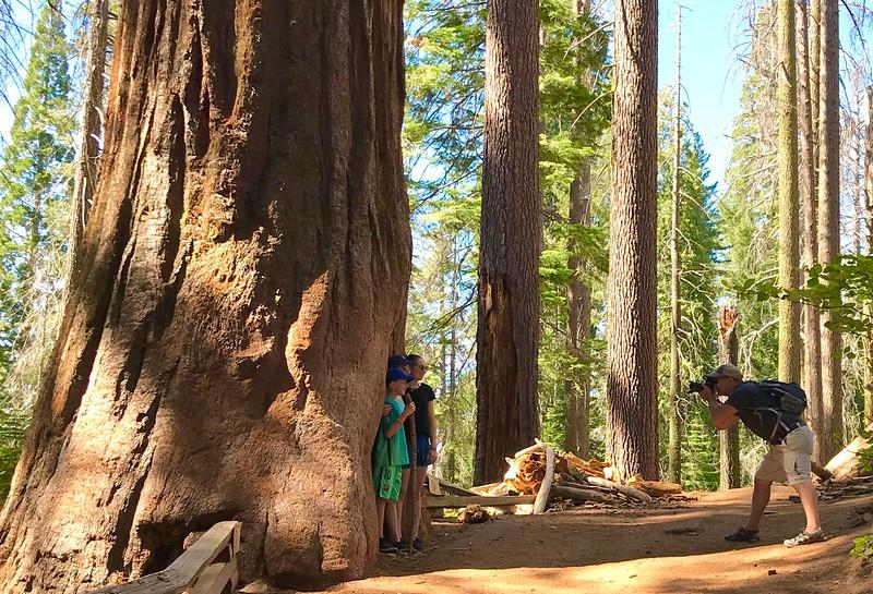 kam7-2019-Yosemite-41.jpg