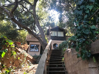 Tree House, Laurel Canyon