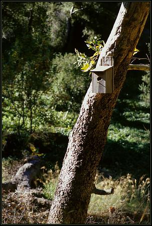 11-19-2005 Modjeska & O'Neil