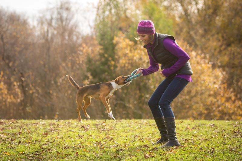 Dog Photos-Edited-27.jpg