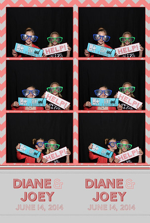 Diane and Joey's Wedding 6.14.2014