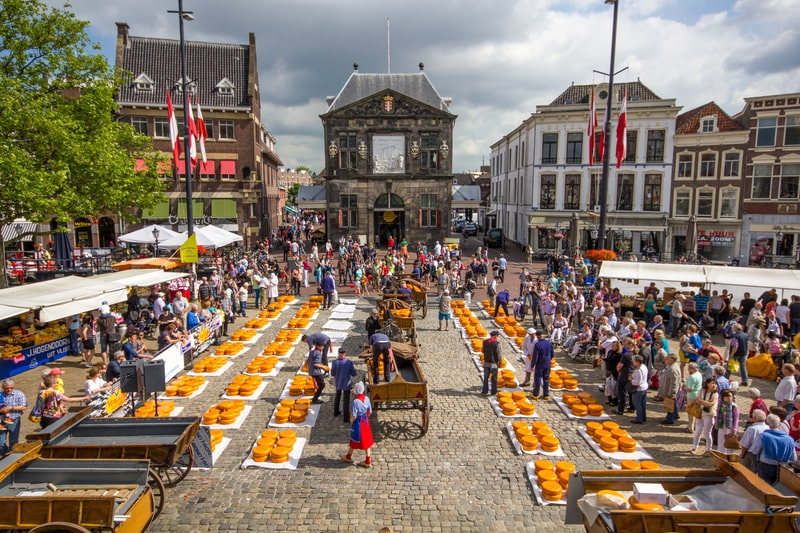visit gouda as a day trip from amsterdam by train