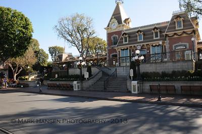 Rose Disneyland - 2014