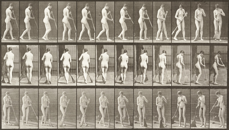 Nude woman walking, turning around, and sweeping the floor (Animal Locomotion, 1887, plate 58)