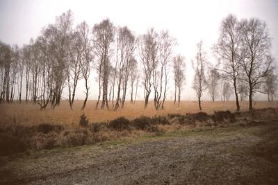 Eupen et l'Osthertogenwald