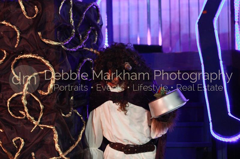 DebbieMarkhamPhoto-Opening Night Beauty and the Beast100_.JPG