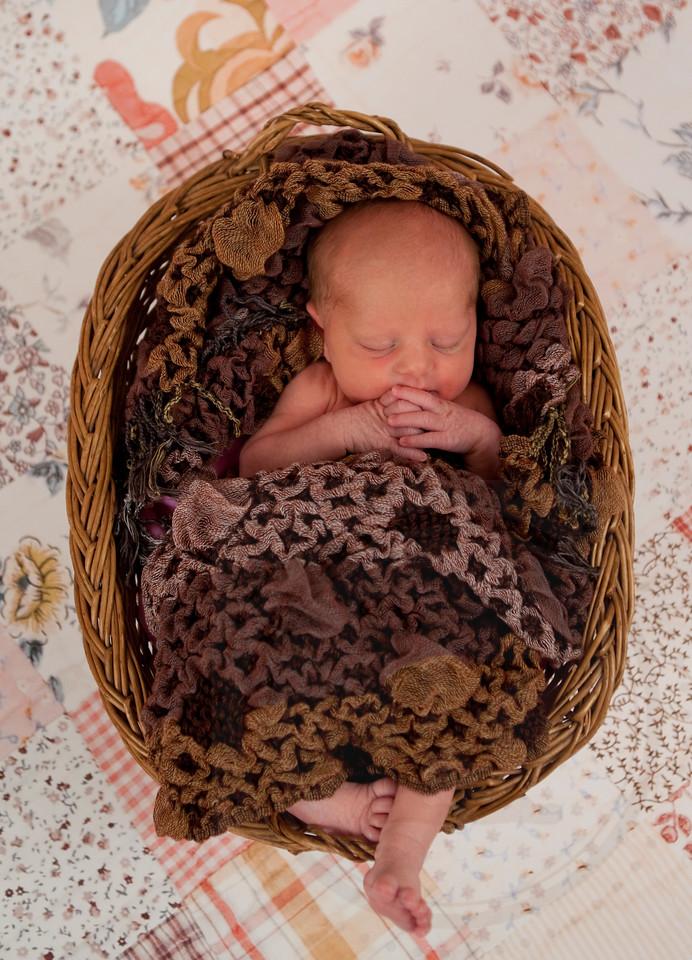 Newborn Aly