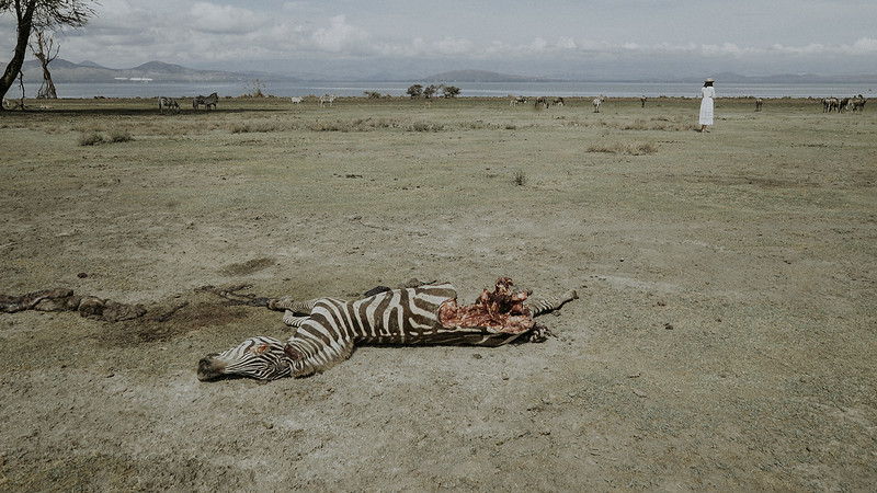 Tu-Nguyen-Destination-Wedding-Photographer-Kenya-Masai-Mara-Elopement-Doris-Sam-88.jpg