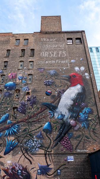 Chicago-StreetArt44.jpg