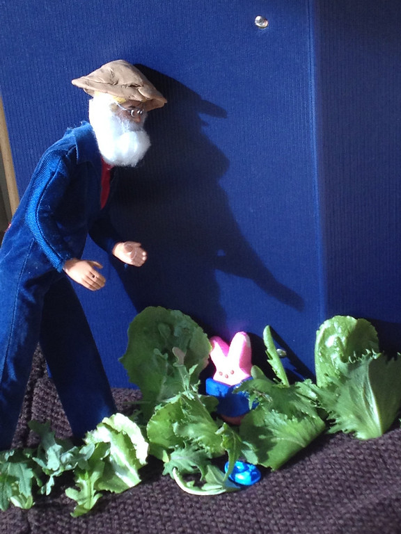 . Peepster Rabbit Hides from Mr. McGregor (Anna Dearmore, age 6)