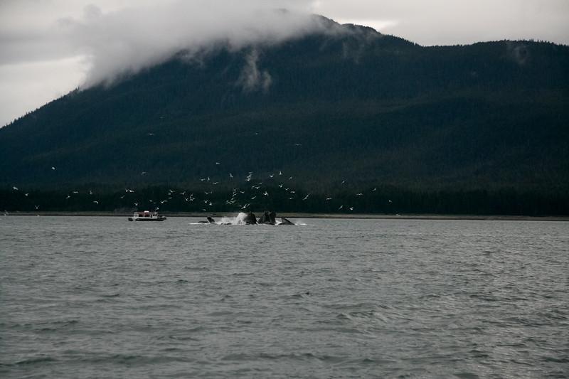 Alaska 2009-338.jpg