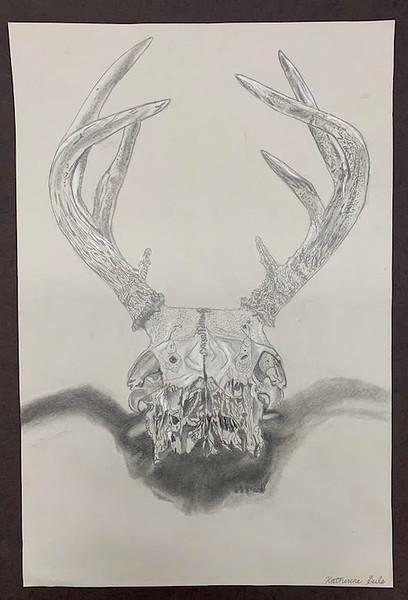 skull - final R.jpg