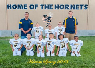 12. Hornets-Bandits