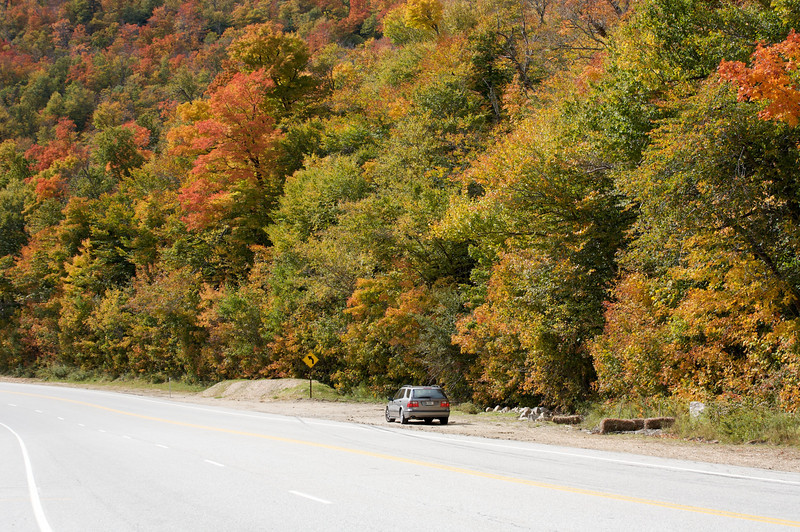 Fall colors near Mt Washington in New Hampshire