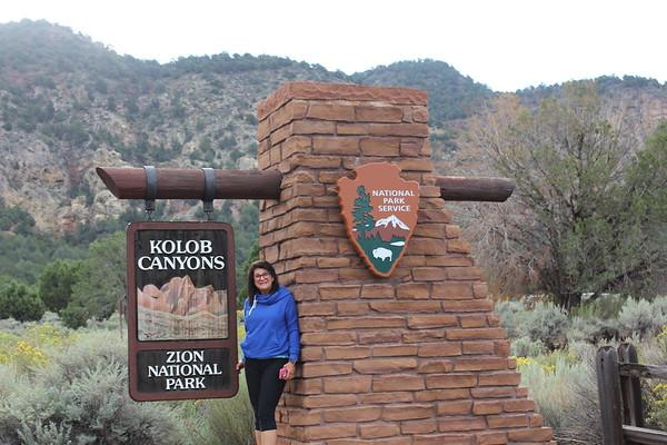 2017 Zion National Park