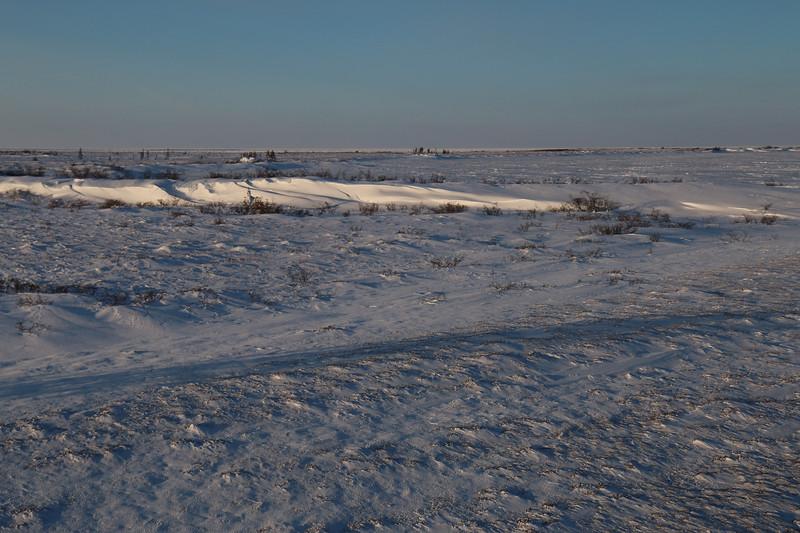 Beautiful lighting on the frozen tundra.