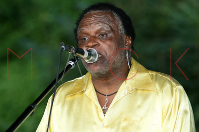 POUGHKEEPSIE, NY - JULY 04:  Bosco & The Storm perform at the 2015 Independence Day Celebration at Victor C. Waryas Park on Saturday, July 4, 2015 in Poughkeepsie, NY.