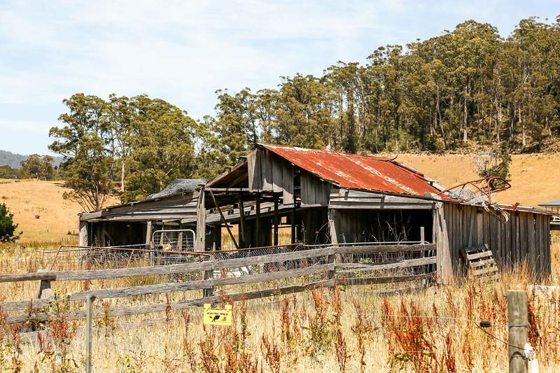 Undergrad Shed in Pyengana, Tasmania.