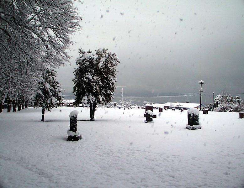 1-30-2002-snow#7.jpg