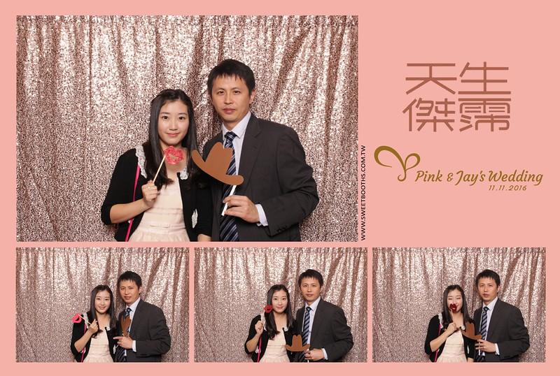 Pink.Jay (115).jpg