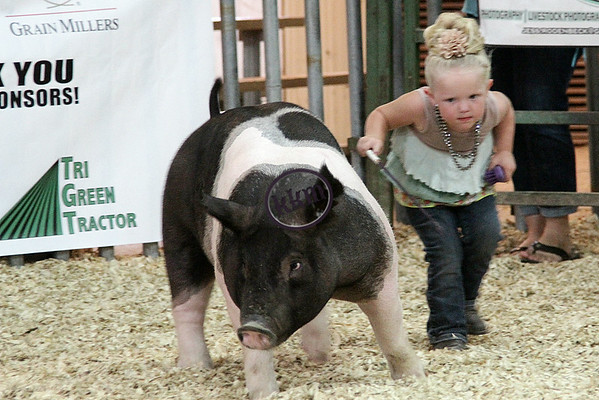 Grant County Open Show