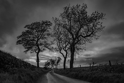 Dunfermline, Fife, Scotland.