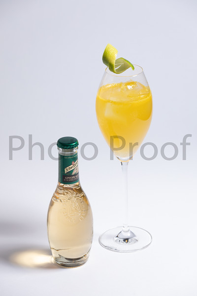 BIRDSONG Schweppes Cocktails 055.jpg