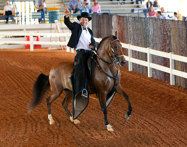SRPFHA Show in Ocala, Florida - March 2011.