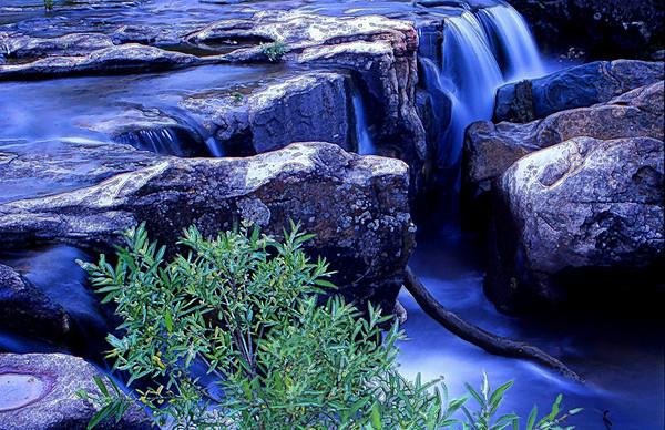 Rivers,Streams