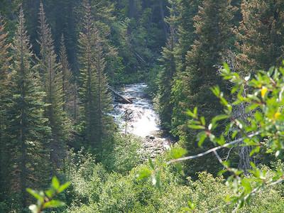 N Cascades 2010
