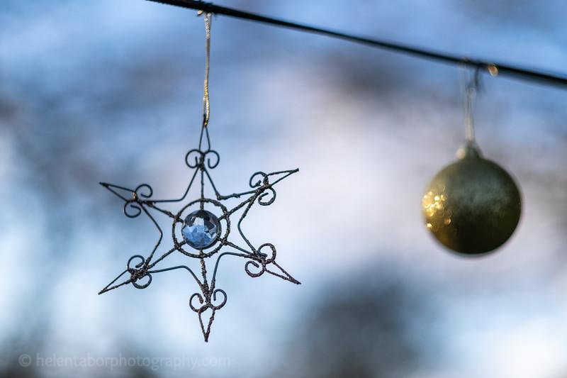 Winter Wonderland daytime-24.jpg