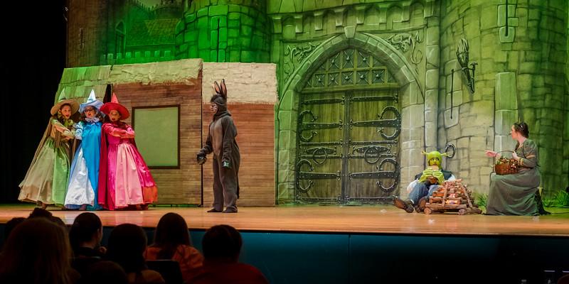 2015-03 Shrek Play 3244.jpg