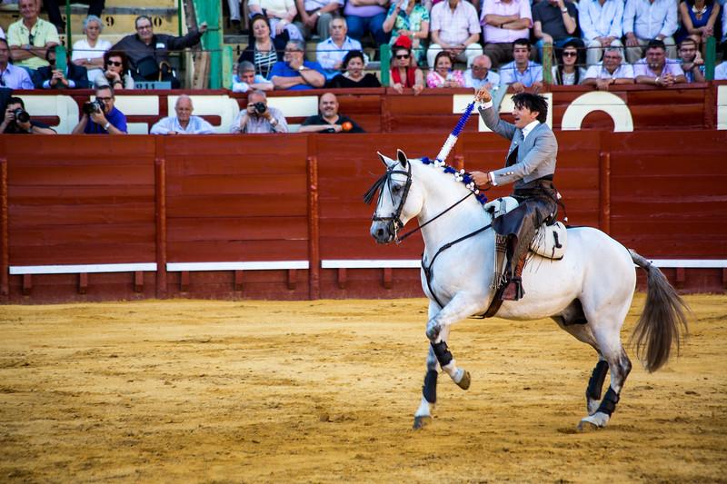 Bullfighting H23.jpg