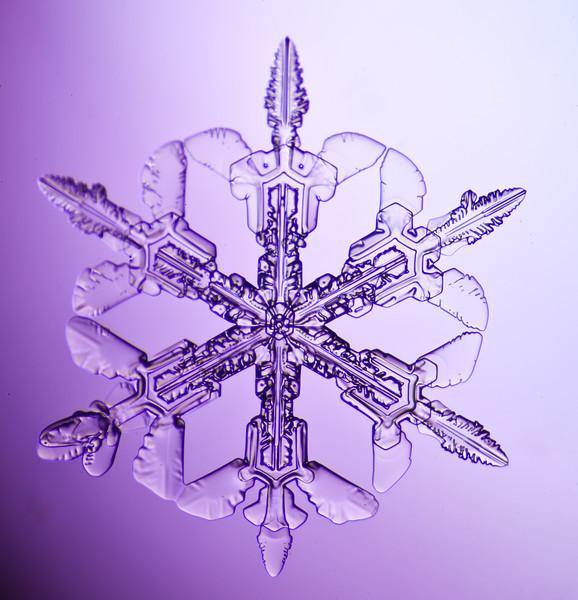 snowflake-3046-Edit.jpg