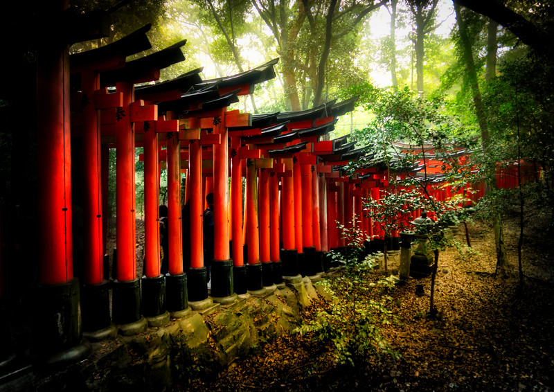Rainy Day at the Red Gates in Kyoto