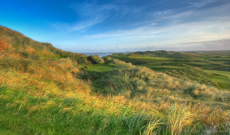 Lots of fescue grass everywhere at Doonbeg - typical of Irish links.