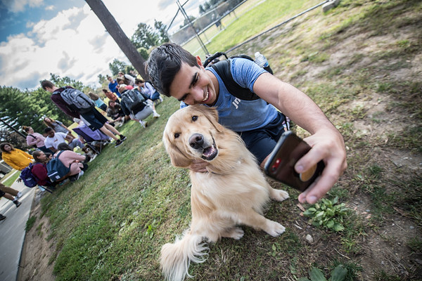 Pet Therapy on The Green, Sept 2019