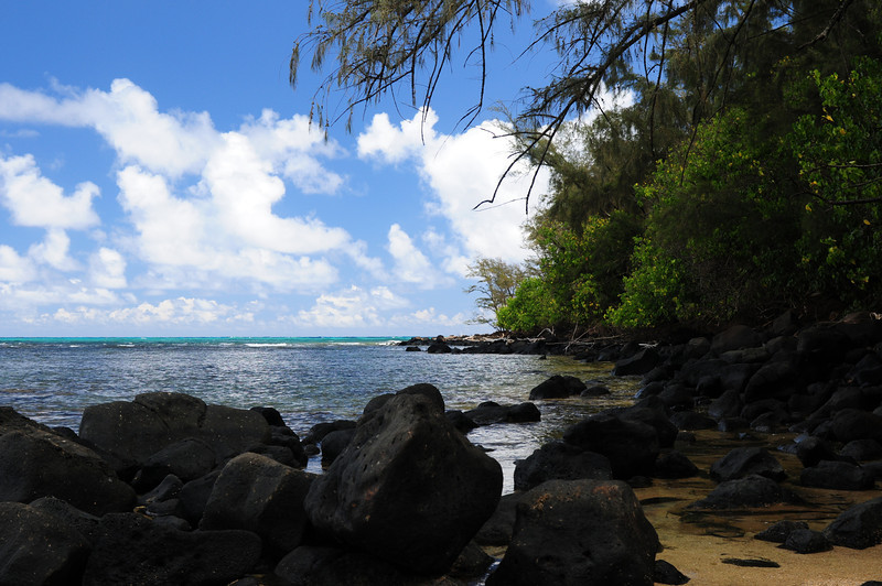 2012_Kauai_Hawaii_August_  0006.JPG