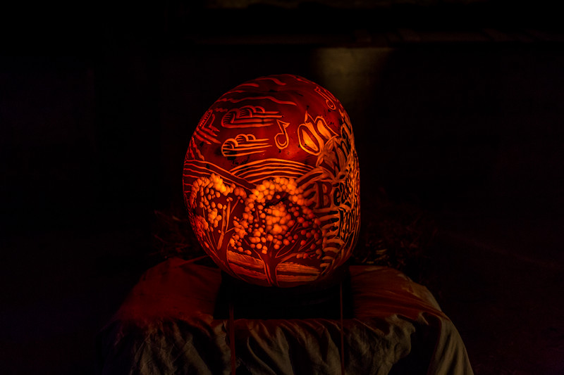 Mike Maney_Pumpkinfest 2017-53.jpg