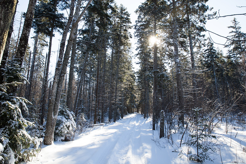 Snowshoeing15-2-025-1.jpg