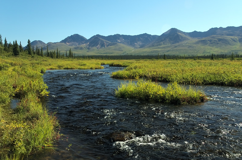 A stream not far from Cantwell on the Denali Highway.
