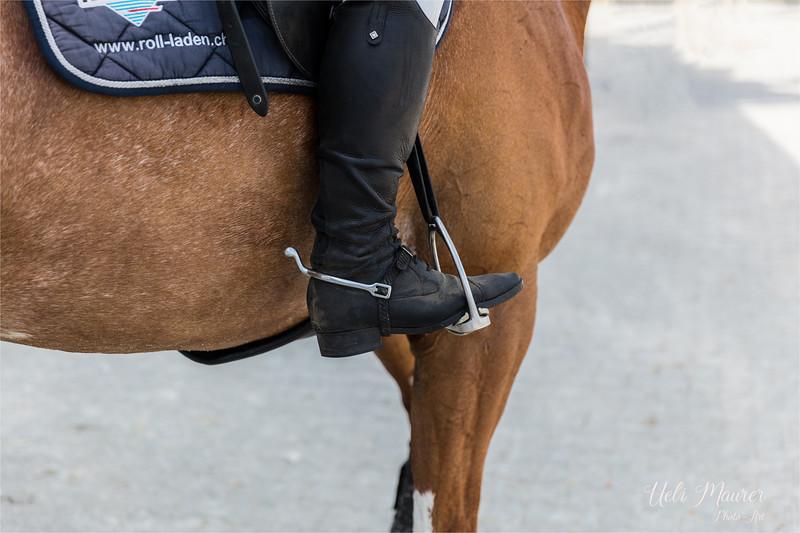 2017-07-07 Pferdesporttage Birkenhof -2502-Bearbeitet.jpg