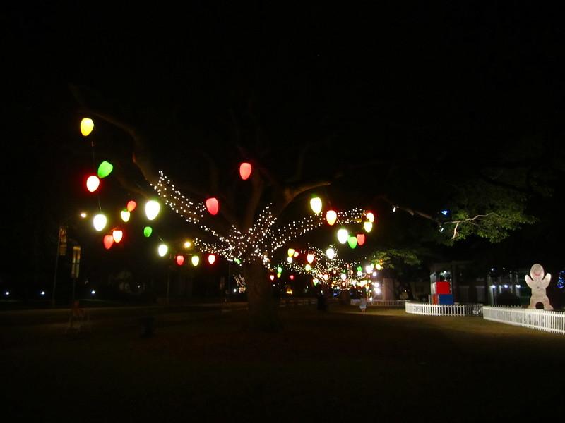 Hawaii - Honolulu City Lights-8.JPG
