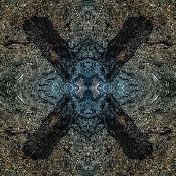 Mirror16-0020 16x16.jpg