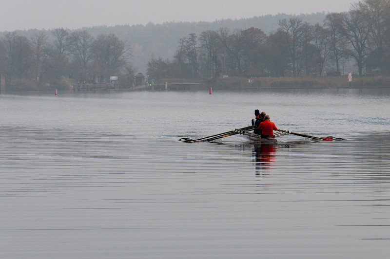 Rowers cruising the Lake Schwielowsee in Potsdam, Germany