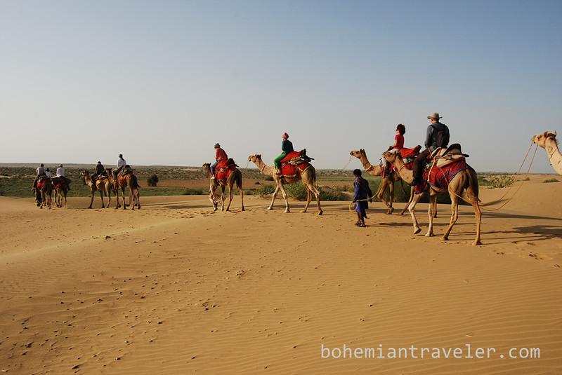 Thar desert camel train safari tourists.jpg