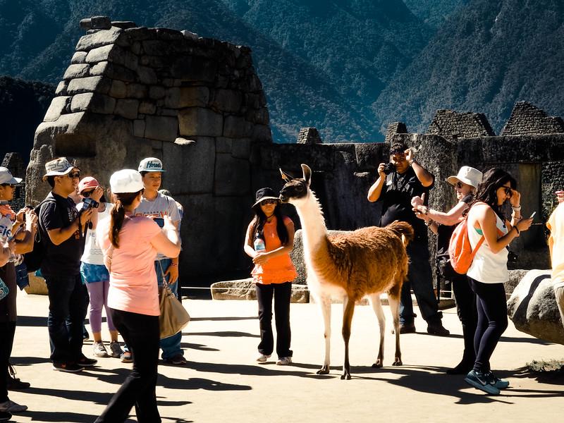 Peru-2014-50.jpg