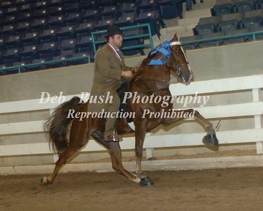 CLASS 13  FOUR YR OLD SPECIALTY  RC
