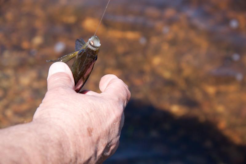 Fishing2-76.jpg