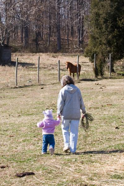 farm0306_07.jpg